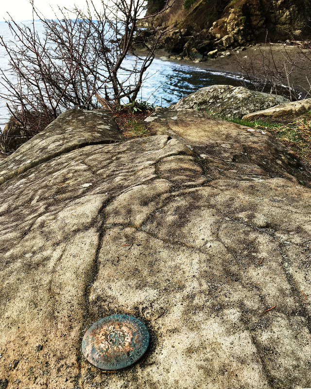 While on the trail at Larrabee State Park, I came across this benchmark.