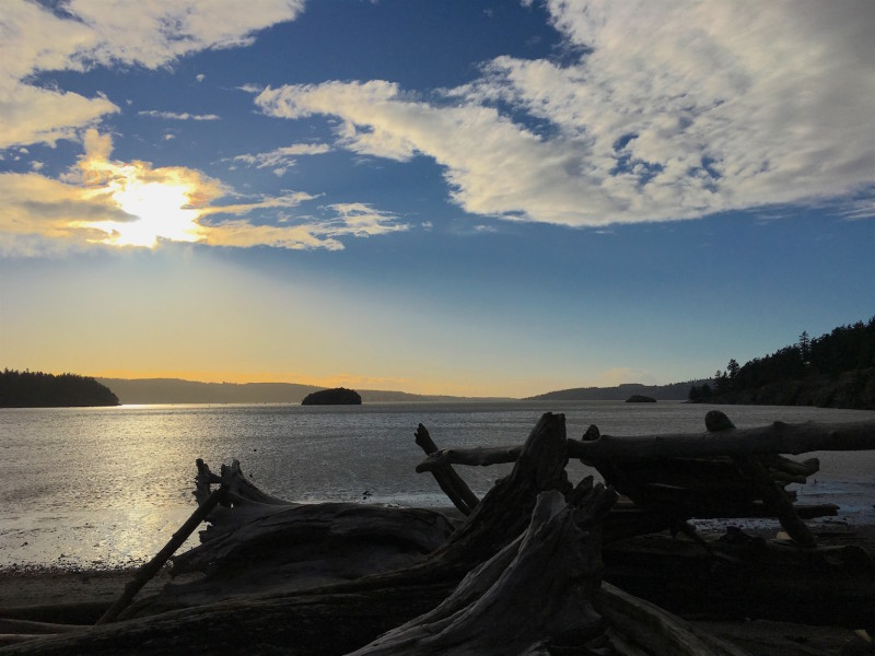 I happened on a beautiful afternoon at Martha's Beach, Shelter Bay, Washington.