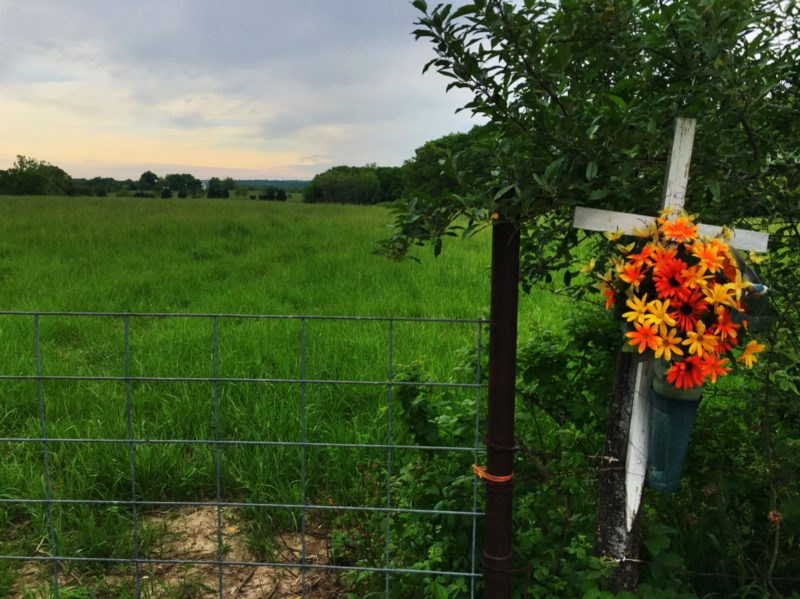 On our way out of town, the Girl and I stopped to visit the place where we dispersed Wife's ashes. Her family keeps a cross and flowers posted here to remember her. It's a beautiful field and I love to stop here and remember her at her best, not at the end.